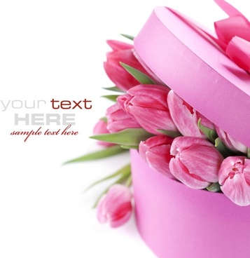 beautiful flowers background 03 hd picture