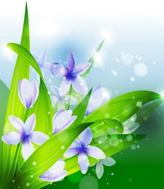 beautiful flowers vector 1
