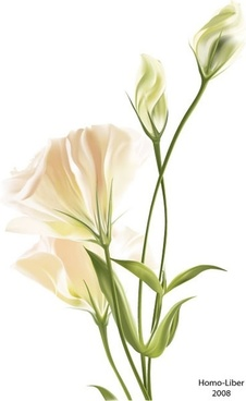 flower background colored modern bright realistic design