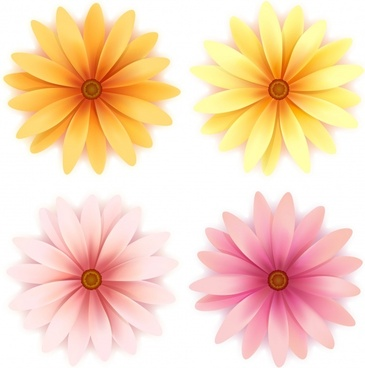 daisy petals icons modern bright colored sketch