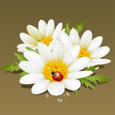 nature background petals ladybugs sketch modern colorful design