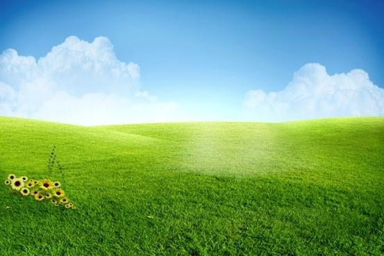 beautiful grass psd