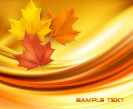 beautiful maple leaf background vector set