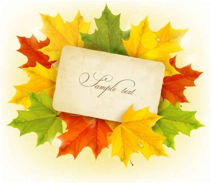 Beautiful maple leaf vector background
