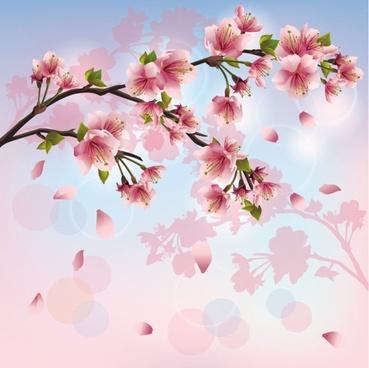 beautiful peach 03 vector