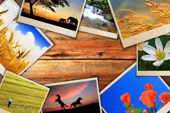 beautiful photo background 05 hd picture