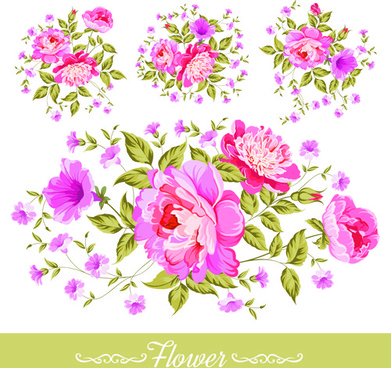 beautiful pink flower vector