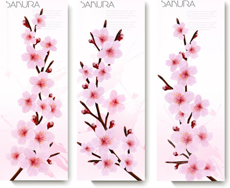 beautiful pink flowers vector banner