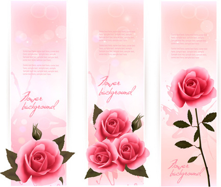 beautiful rose vertical banner vector