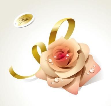 beautiful roses 01 vector