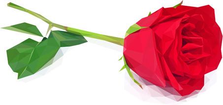 beautiful roses vector