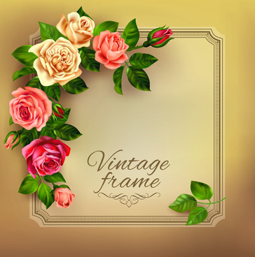 beautiful roses with vintage cards vector