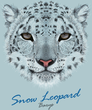 beautiful snow leopard vector background