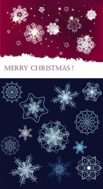 beautiful snowflake background vector set