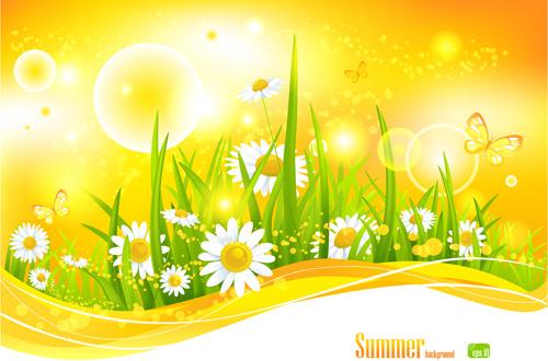 beautiful summer landscapes design vector