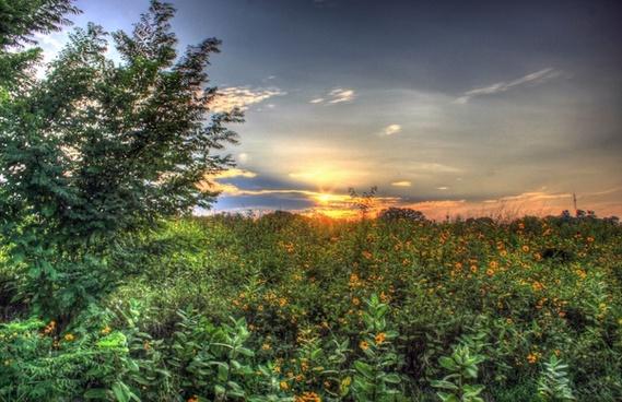 beautiful sunset at chain o lakes state park illinois