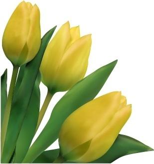 tulip background realistic design green yellow decor