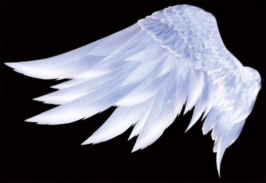 beautiful wings psd layered painting
