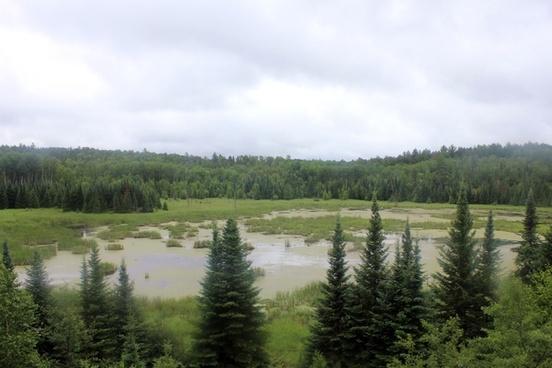 beaver pond overlook at voyaguers national park minnesota