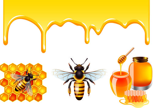 bee honey dripping effect background vector