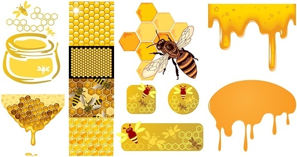 Bee free vector download (330 Free vector) for commercial ...