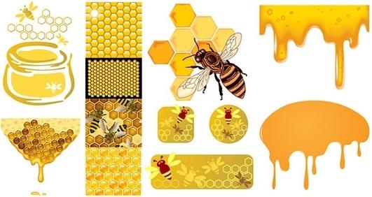 honey bee design elements golden combs liquid sketch