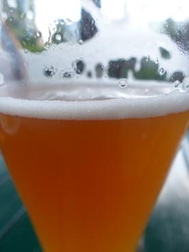 beer drink wheat beer