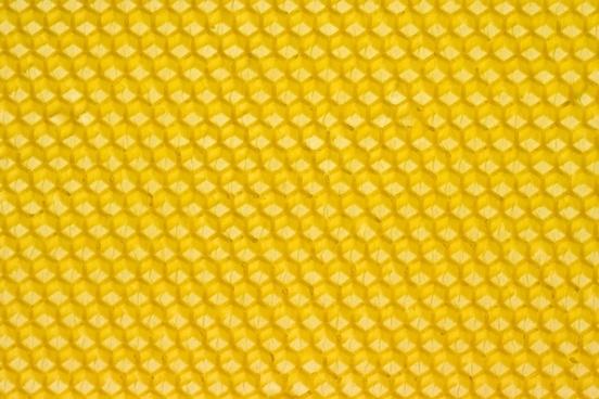 beeswax honey honeybee