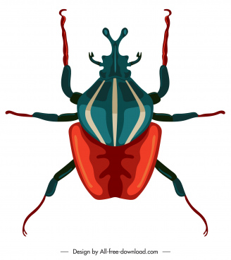 beetle insect icon colored closeup symmetric design