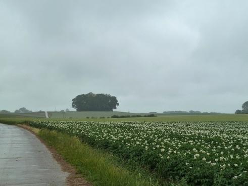 belgium landscape sky