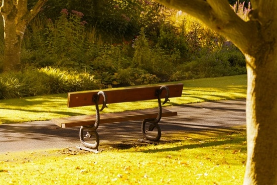 bench in the morning