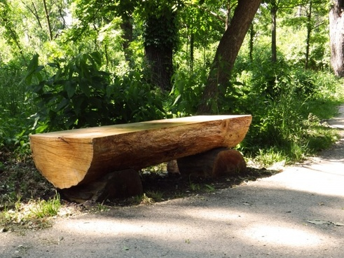 bench rest trail
