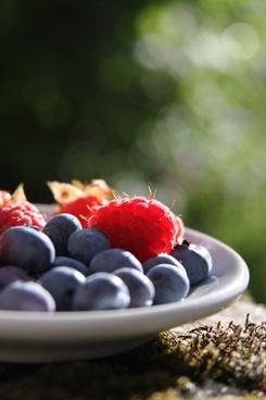 berry blackberry blueberry closeup color delicious