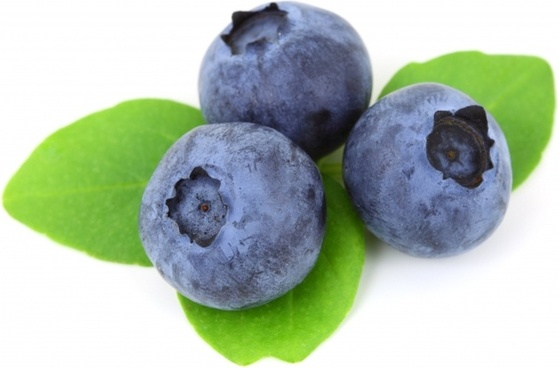 berry blue blueberry