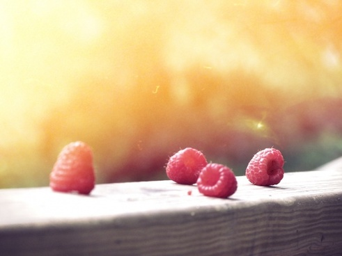 berry close up food fruit raspberry summer wood
