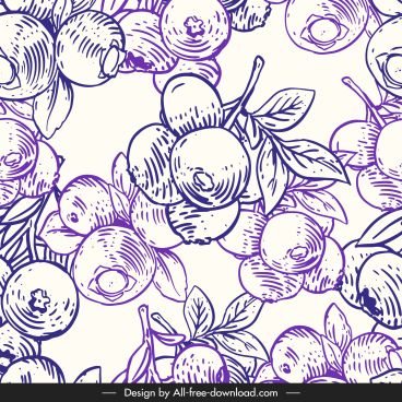 berry fruit pattern template classical handdrawn sketch