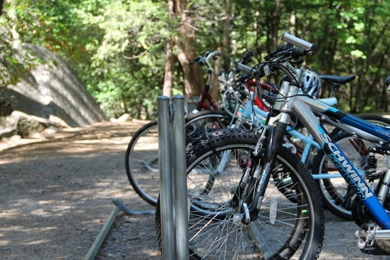 bicycles on a bike rack in the forest