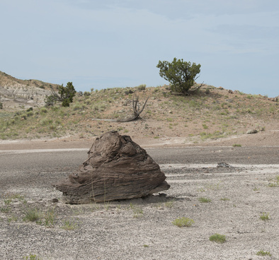 big brown rock