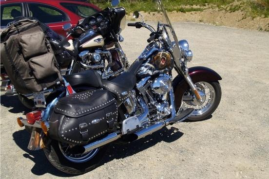 bike harley davidson motorcycle