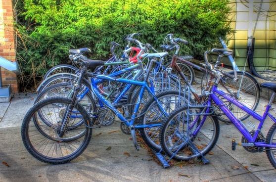 bikes on a rack