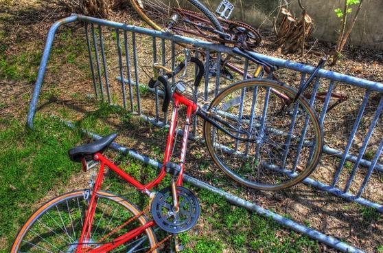 bikes on the rack
