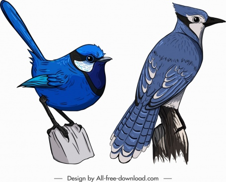 bird creature icons blue sparrow red whiskered sketch