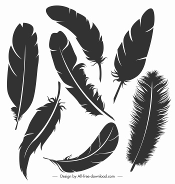 bird feather icons black silhouette sketch