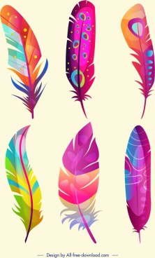 bird feathers icons colorful fluffy design