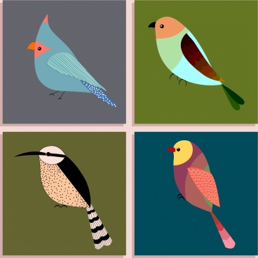 bird icons isolation various multicolored types