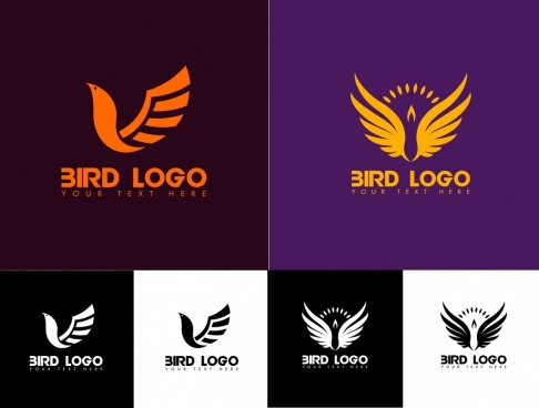 bird logo sets wings decoration various sketch