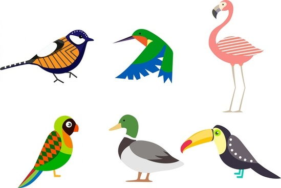 birds collection isolated with various types