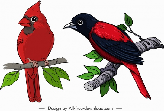 birds icons red whiskered sparrow sketch classical design