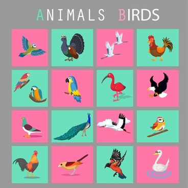 birds icons set isolated in flat colors style