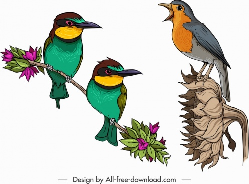 birds icons sparrow flowerpecker sketch colorful design